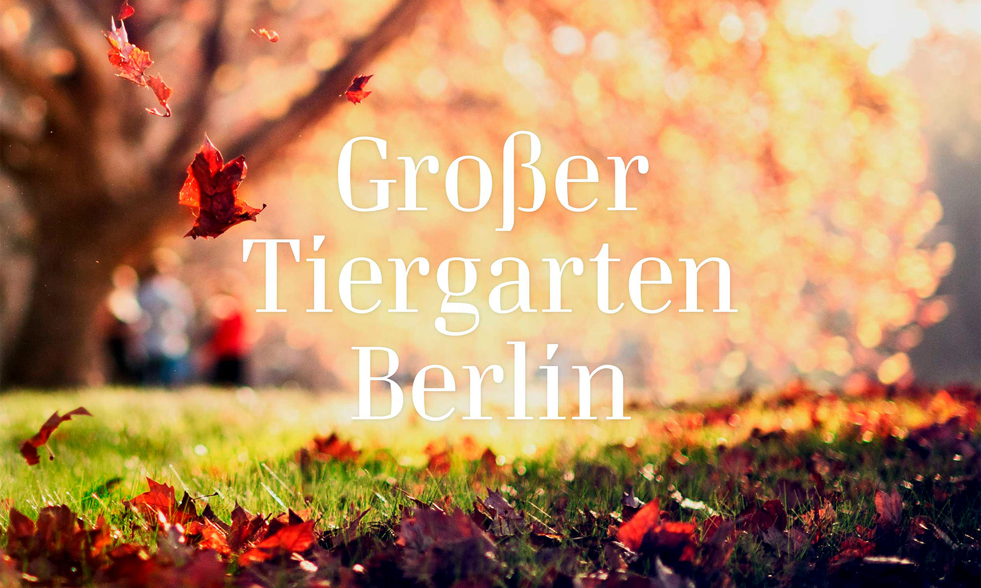 minigram_grosser_tiergarten_13_2000x1200